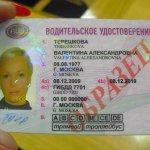 Международные водительские удостоверения: новые возможности.