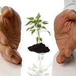 Поддержка малого и среднего предпринимательства в различных отраслях деятельности